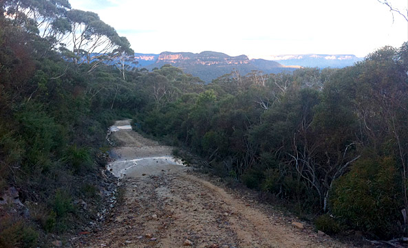 Narrowneck Trail